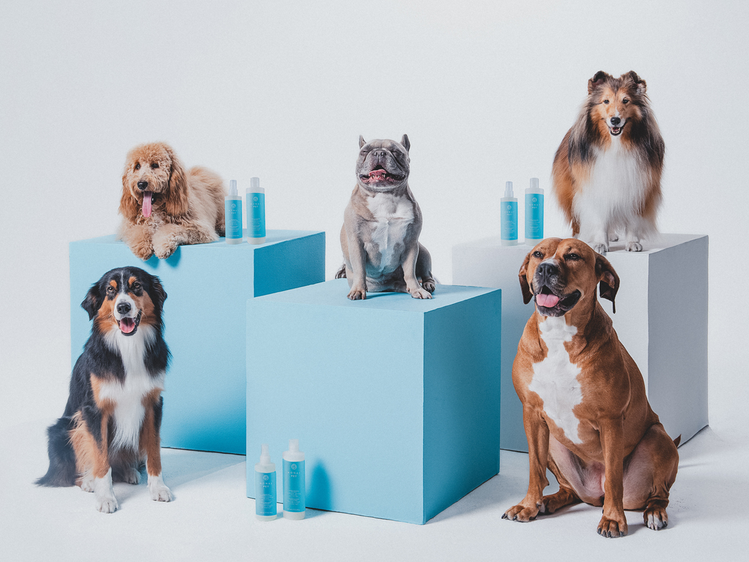 monat pet, pet shampoo, monat products, monat hair products, dog wash,